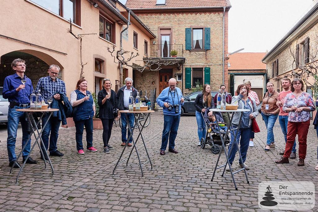 Secco- und Weinprobe im Weingut Göhring