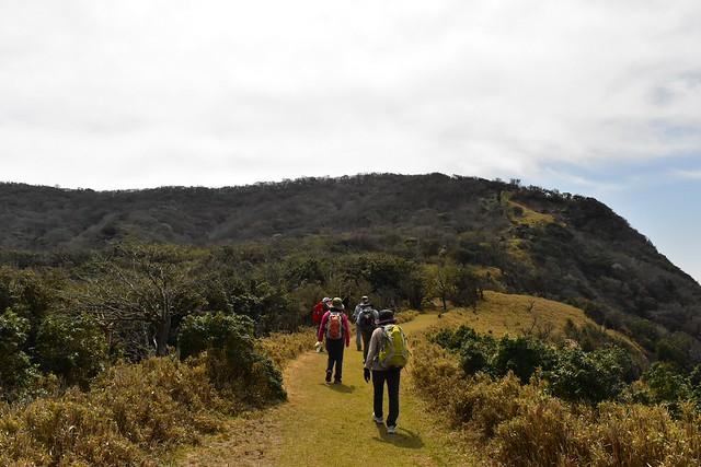 達磨山への芝生の登山道