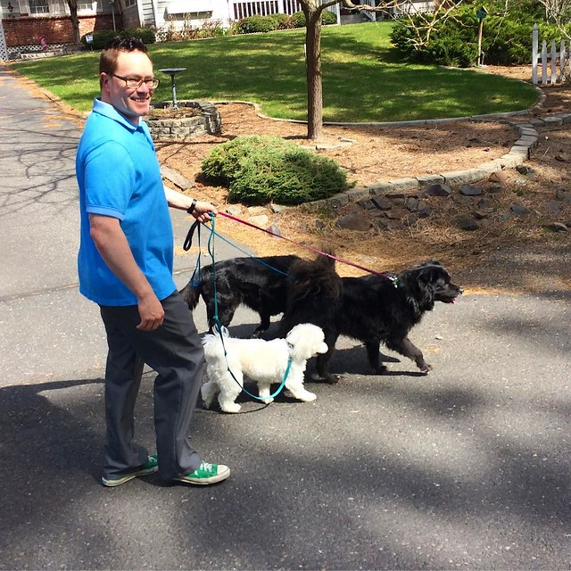 Josh takes the pack for a walk.