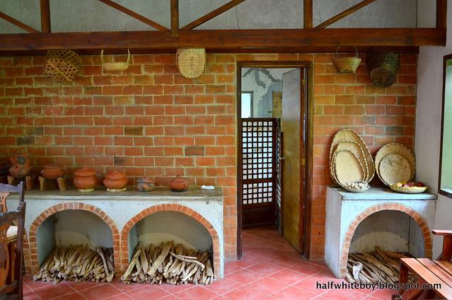 halfwhiteboy - the farmhouse in aloguinsan cebu 07