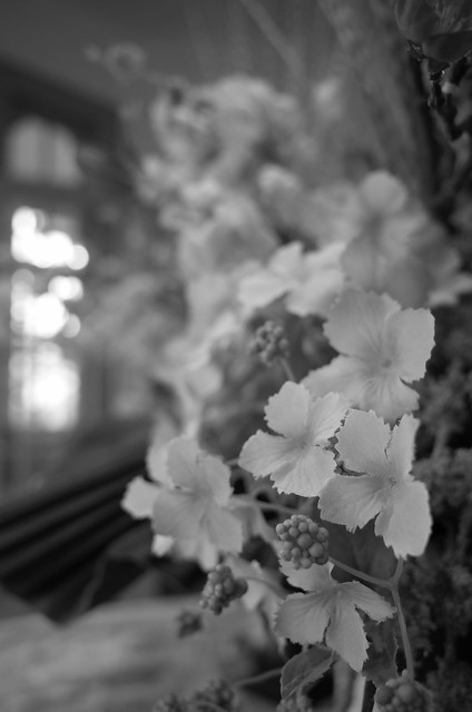 monochrome artificial flowers Bluff No.18