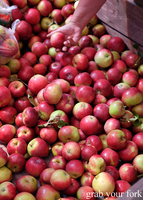 Tasmanian apples at the Salamanca Market in Hobart