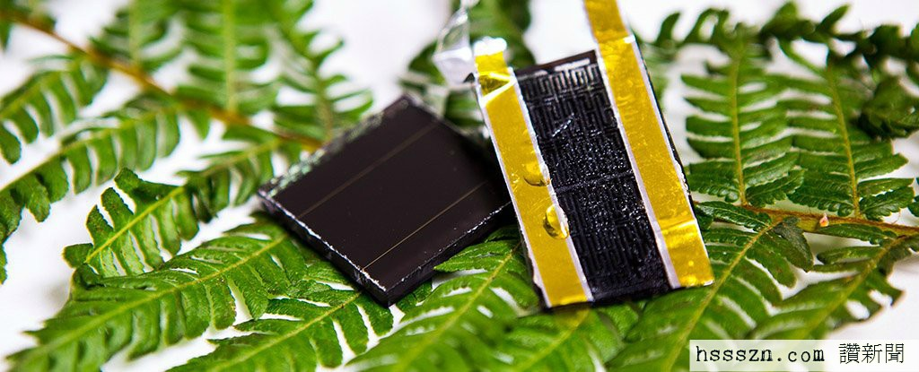 fern-inspired-solar-storage-rmit_1024