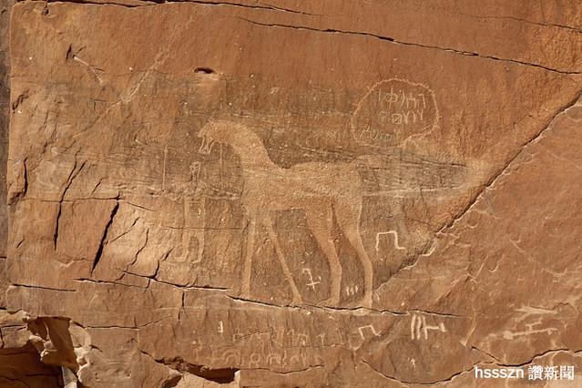 Al-Naslaa-man-leading-horseTayma
