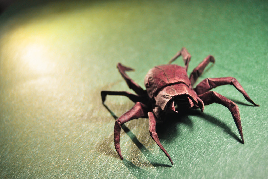 Origami Wolf Spider - Brian Chan | I like so much the ...