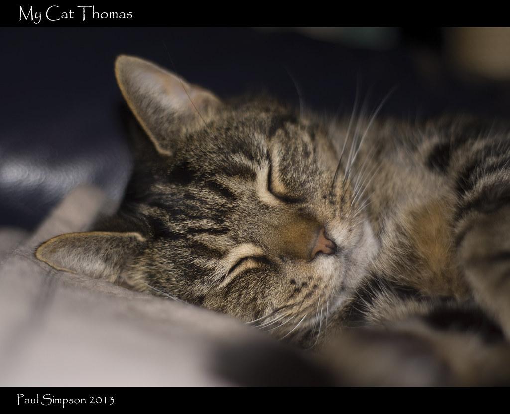 Interesting. Flikr sleeping hairy pussy