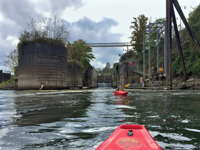 Kayaking WIllamette River
