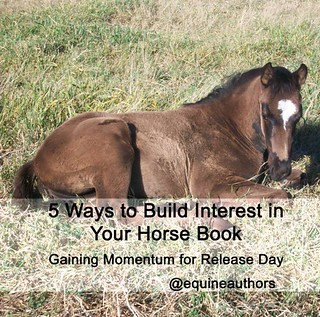 5 Ways to Build Interest in Your Horse Book - Gaining Momentum for Release Day