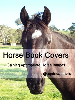 Horse Book Covers - Gaining Appropriate Horse Images @equineauthors