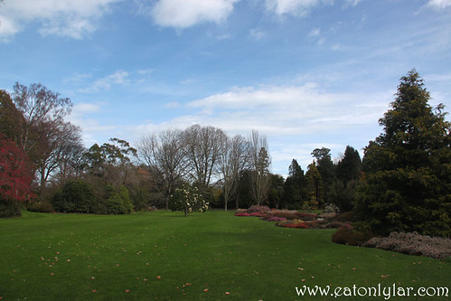 Botanic Gardens, Christchurch | by Eat Only Lar!