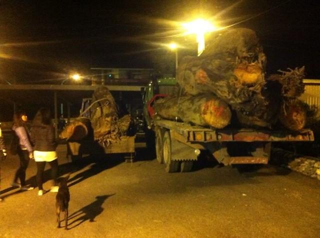 Lisin Haluwey拍攝銅門部落守夜包圍卡車