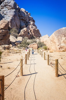 Hidden Valley Trail, Joshua Tree National Park | by Fluttering By