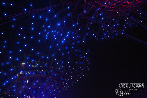160910f OCBC Skywalk Gardens by the Bay _114