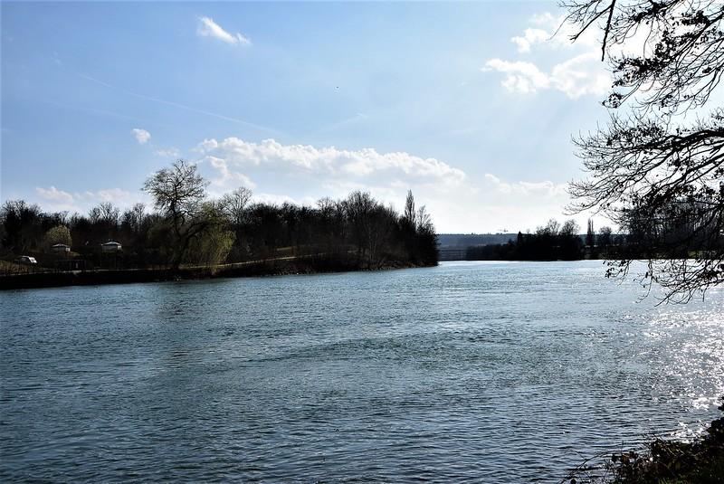 River Aar 17.03 (3)