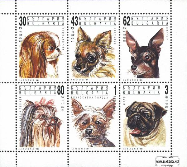 Známky Bulharsko 1991 Psy, nerazítkovaný hárček MNH