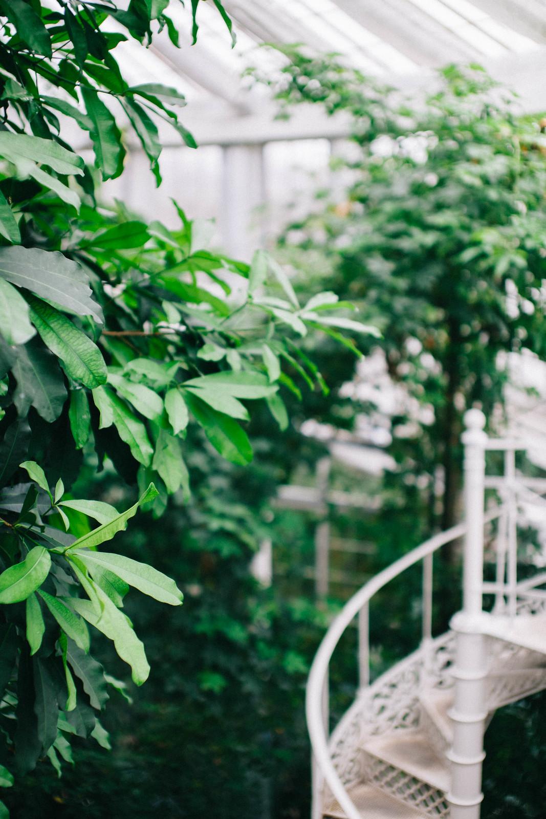 Kasvitieteellinen-puutarha-23