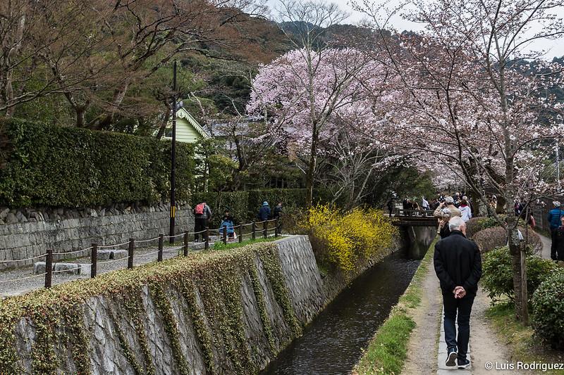 Paseo-Filosofia-Kioto-69