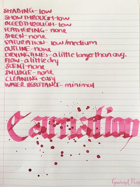 Ink Shot Review Diamine Flowers Carnation @AppelboomLaren 5
