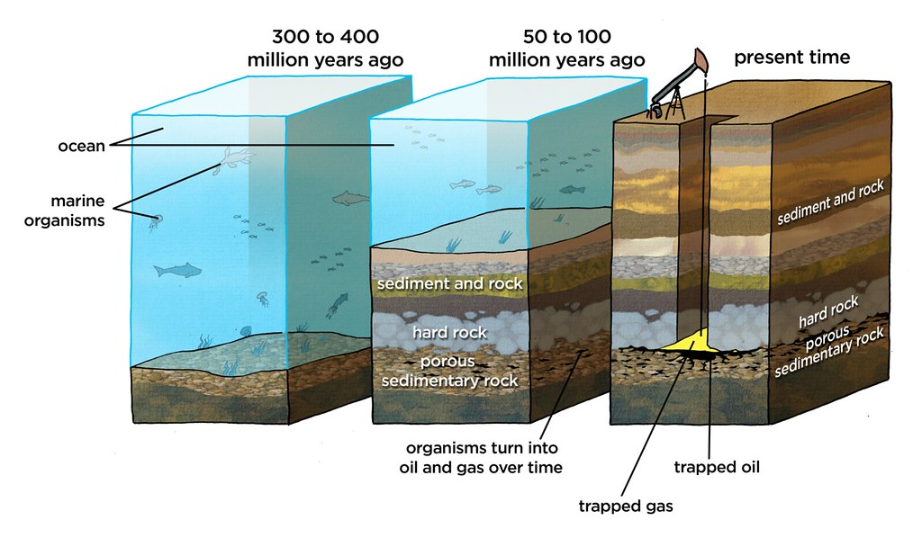 Image result for oil  formation diagram
