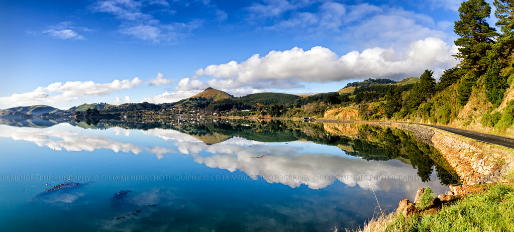 Broad bay otago peninsula otago new zealand jul 2014 for Landscaping companies in new zealand