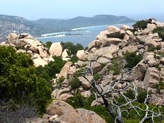 Sur le sentier de la crête N de Ghjuncaghjola redescendant à la plage de Santa Ghjulia : Palombaghja et sa presqu'île