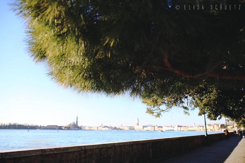 Venice_by_ems_3