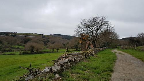 Pilgerreise: 20.03.2017 Portomarin - Ventas de Narón