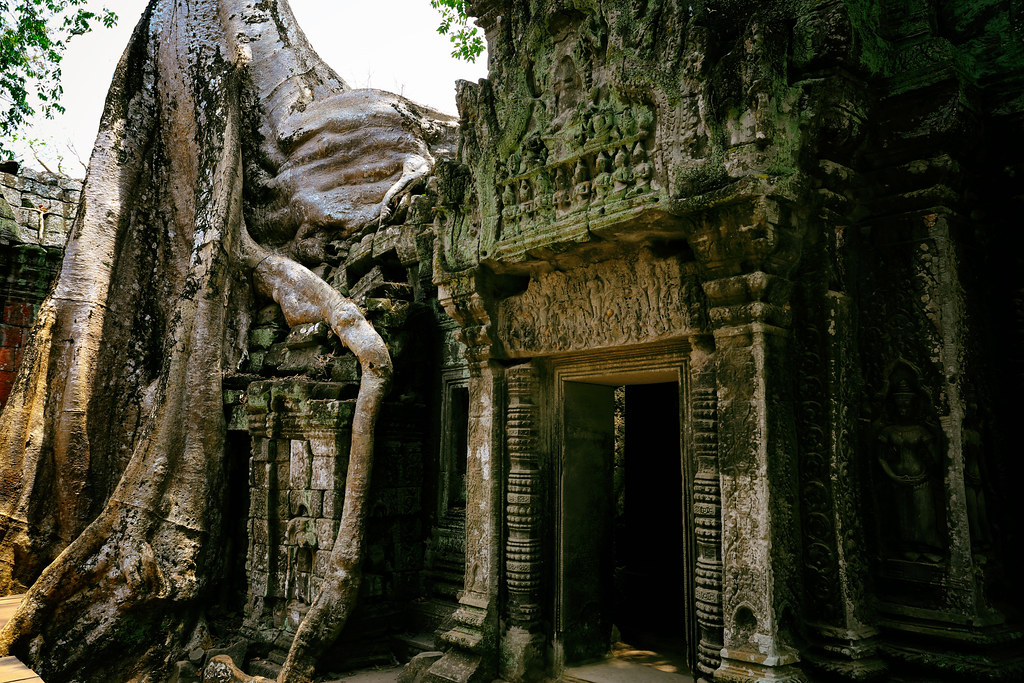 Exotic Ta Prohm