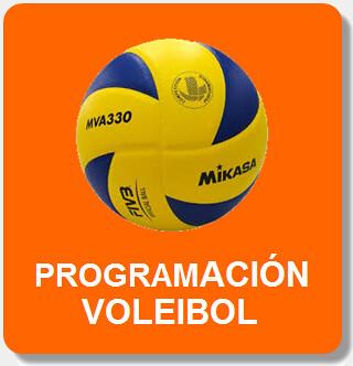 Icono programación voleibol