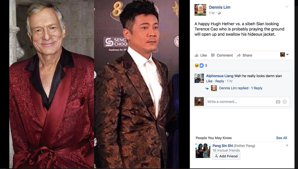 The guy who owned Star Awards 2017 has been tracking Star Awards fashion disasters since 2011 - Alvinology