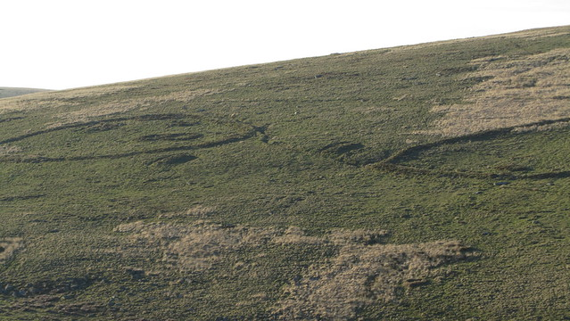 Ancient settlements on Huntingdon Warren