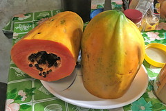 Sibale island - Lunch at Auntie's papaya