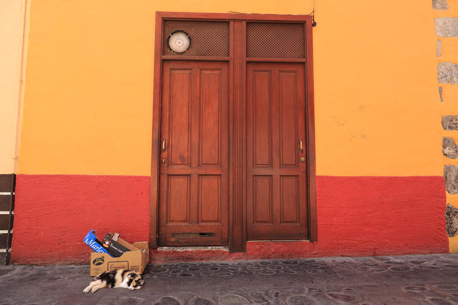 El Gato | by Rasande Tyskar