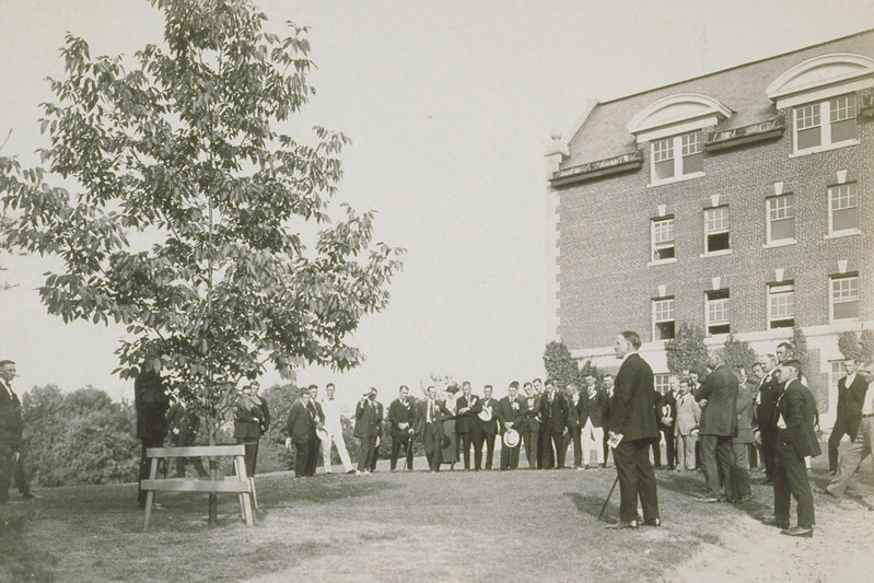 Rededication Of 1916 Class Tree For B.T. Avery, North Of Storrs Hall, Connecticut Agricultural College