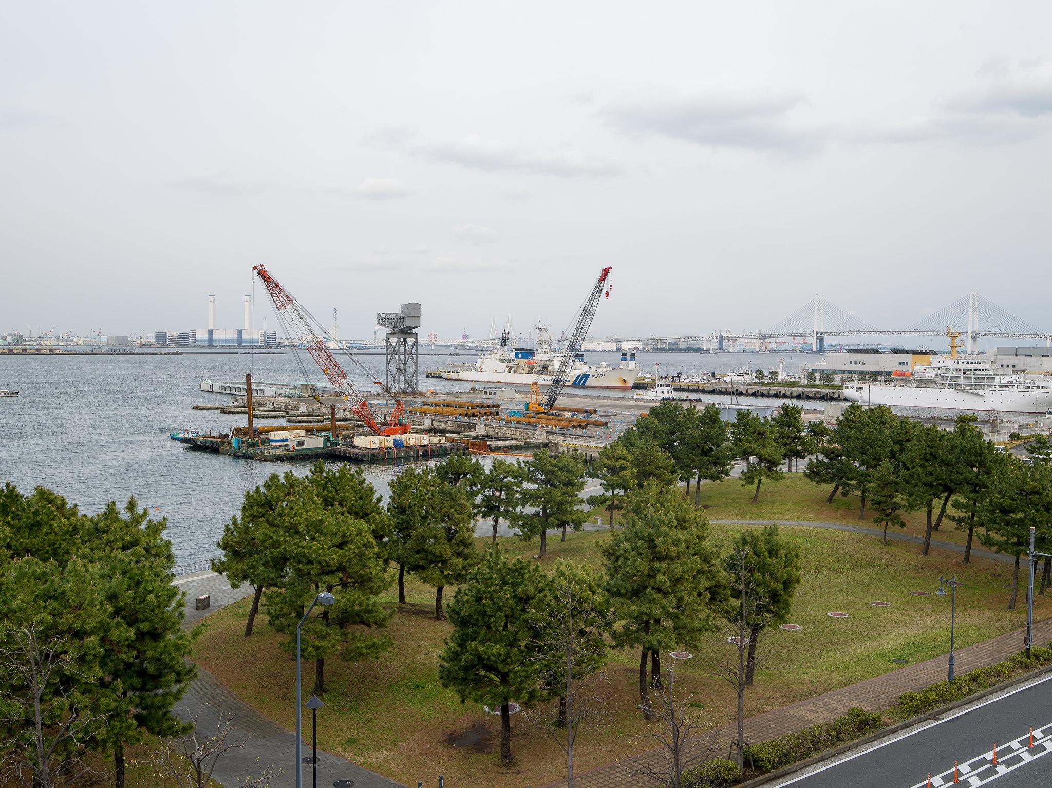 2017_全家東京賞櫻自由行_645D + 28-45mm + 55mm + 90mm macro