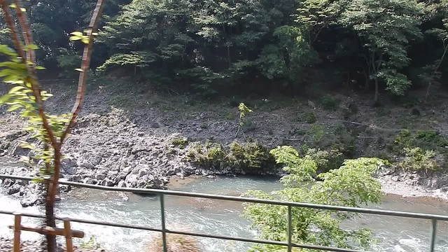 On the Sagano scenic railway, Arashiyama