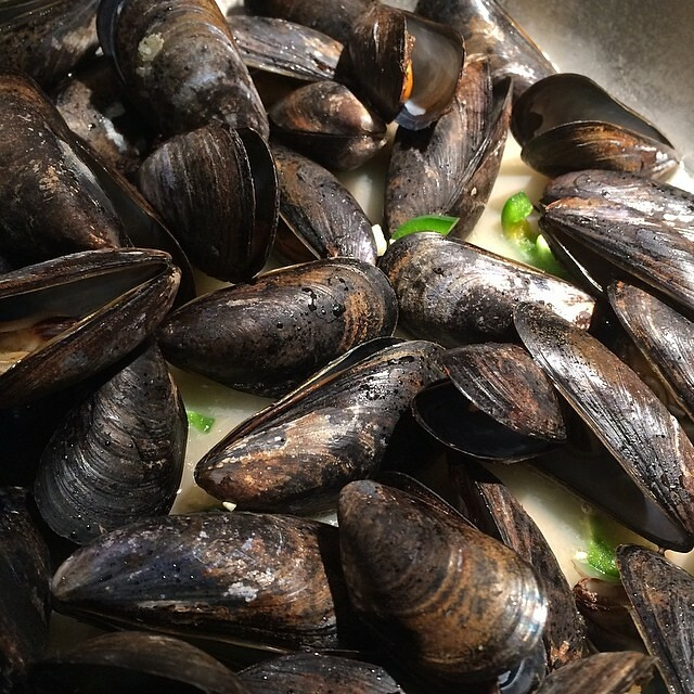 Mussels From Lubec Maine Good Price At Whole Foods Simme Flickr