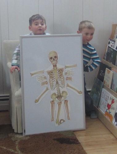 their skeleton spider