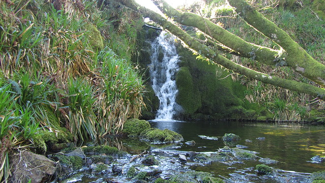 Shavercombe Brook Waterfall