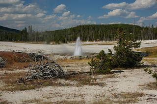 Cliff Geyser erupting (30 August 2011) 28 | by James St. John