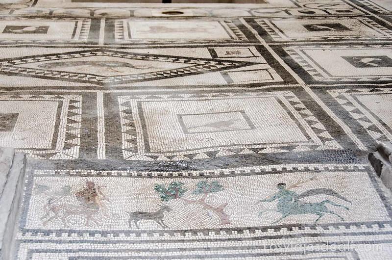 visita a Pompeya mosaico