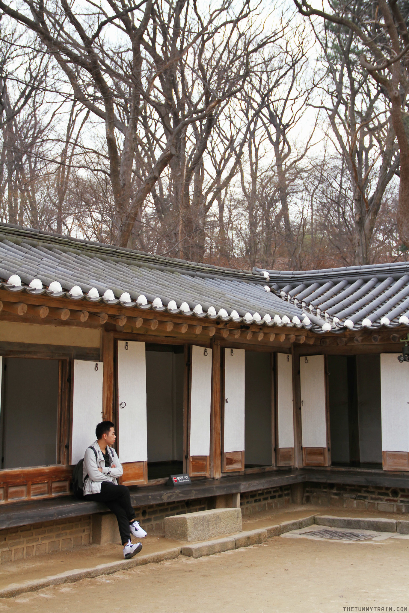 33530699085 d7d4150920 k - Seoul-ful Spring 2016: Greeting the first blooms at Changdeokgung Palace