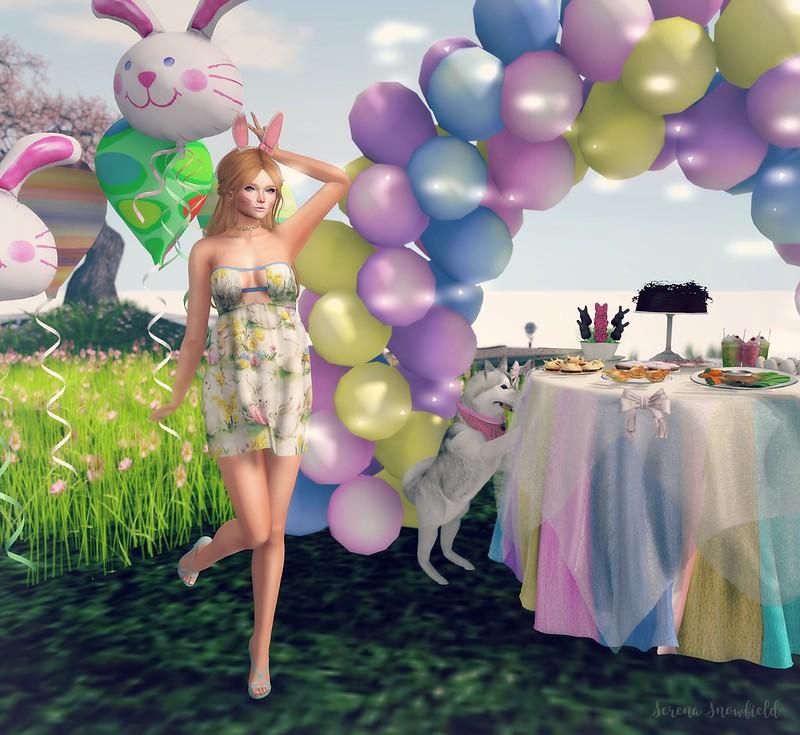 bunny5_001ff