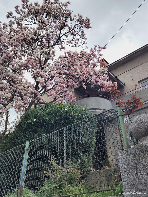 2017-04-18 03.05.05 1-01