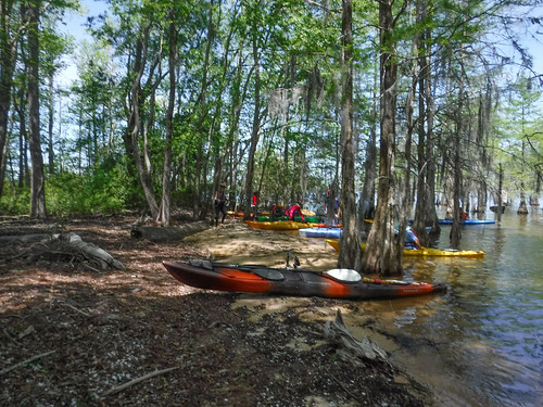 Paddle to Church Island with the Tri-County Blueways Paddlers-026