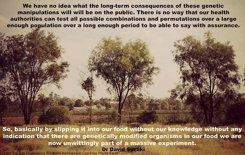 David Suzuki on GMO