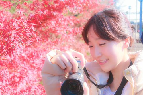 【旅遊】楓葉限定。絕美「嵐山」(上)