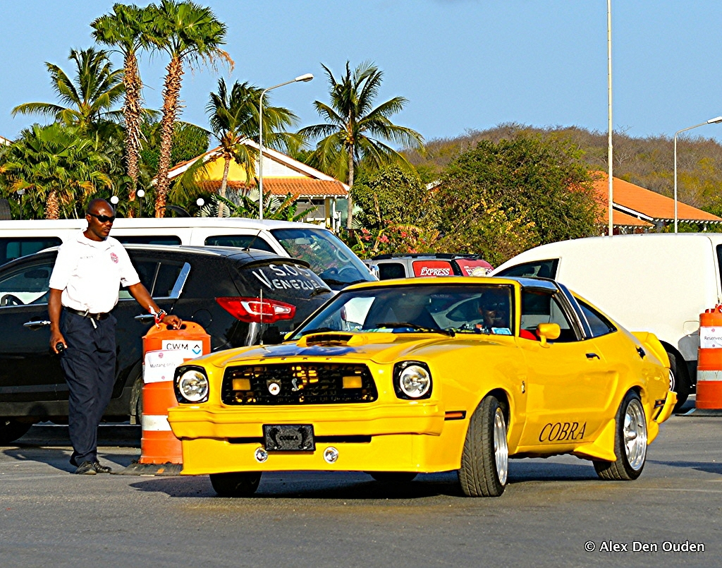 Ford Mustang Ii 78 King Cobra Curacao Ford Mustangs