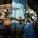 La Habana Flores #02-4689.jpg
