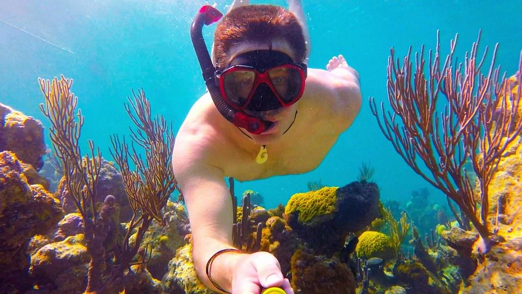 COM Snorkeling Bight Reef Coral Gardens, Providenciales, Turks U0026 Caicos |  By SNORKELINGDIVES.